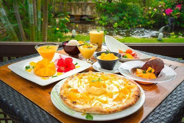 宮古島で楽しむ!アップルマンゴーの多彩なメニュー
