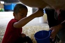 北海道ならではの「ファームインで農場ステイ」ができるオススメスポット
