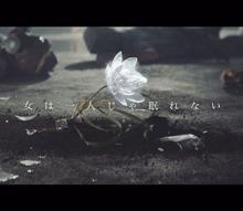 乃木坂46、映画『ワンダーウーマン』イメージソング「女は一人じゃ眠れない」MV公開