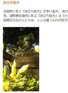 珍しい「逆立ち狛犬」 なぜ金沢に多いの?