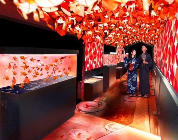 すみだ水族館が「東京金魚ワンダーランド」を開催中!