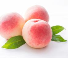 美味しく食べて美容も健康も手に入れよう!夏のフルーツ【桃】の効能