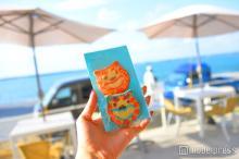 キュートな沖縄土産シーサークッキーを発見!瀬長島ウミカジテラスの隠れた逸品
