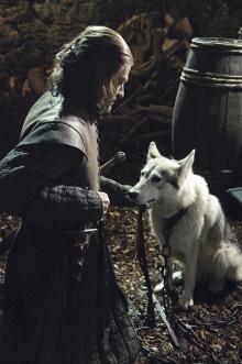 『ゲーム・オブ・スローンズ』ピーター・ディンクレイジ、大狼を求めるファンに苦言