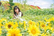 JR大阪駅北「うめきたガーデン」に夏の花が満開!花と一緒に撮るコツは?